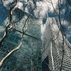 NYC Arch & Trees #8 (Ximo Michavila) Tags: nyc tree winter newyork city usa abstract windows building urban ximomichavila graphic architecture archdaily archidose archiref blue glass lines day clouds perspective