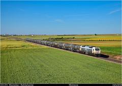 Cómo está el campo (Trenes2000) Tags: trenes tren renfe 333 333351 bioetanol cisternas vacio babialfuente muriedas moriscos diesel prima vossloh españa trenes2000 mercancias mercante