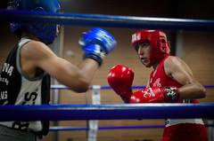 30308 - Face Off (Diego Rosato) Tags: boxe boxing pugilato boxelatina ring match incontro nikon d700 2470mm tamron rawtherapee face off