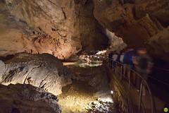 Demänovská Cave of Liberty (petrOlly) Tags: europe europa slowakei slovakia slovensko słowacja sk2018 demänovskácaveofliberty demänovskájaskyňaslobody cave jaskinia nature natura przyroda water people