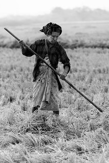 Hpa An Birmanie_1668
