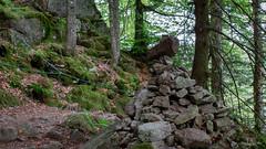 26052018-IMG_2281 (Steffan Photos) Tags: labresse grandest france fr randonnée vosges la bresse lac corbeaux bramont sechemer étang refuge union col vierge vieille montagne