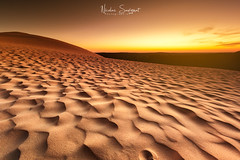La Dune en Or (Njones03) Tags: 2018 arcachon bassin bassinarcachon landscape larros lateste nicolassavignat seascape sun latestedebuch nouvelleaquitaine france fr