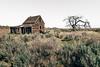 Dead End (Pedalhead'71) Tags: abandoned desert douglascounty easternwashington homestead house prairie washington
