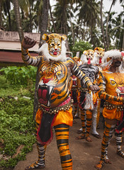 Tiger Dance Festival (Sharpshooter Alex) Tags: pulikali tiger dance festival onam kerala male men culture painted bodies india indian asia art trees