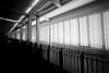 Light and Dark (mkk707) Tags: film analog wwwmeinfilmlabde voigtländer cosina voigtländerbessal voigtländersuperheliar15mmf45ltm 35mmfilm blackwhite ilfordpanfplus ilford fisheye