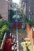 Bueren en Fleurs (Liège 2018) (LiveFromLiege) Tags: liège montagnedebueren buerenenfleurs liege1418 liège1418 luik wallonie belgique architecture liege lüttich liegi lieja belgium europe city visitezliège visitliege urban belgien belgie belgio リエージュ льеж buerenenfleurs2018 bueren en fleurs montagne de 1418 wwi ww1 fleur flowers flower stairs escalier escaliers coteauxdelacitadelle coteaux la citadelle