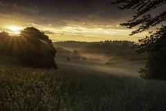 Matin sur la campagne Corrèzienne (thierrycolas19) Tags: matin corrèze limousin prairie rural calme lever soleil aurore aube rayonsdesoleil country sunset leefilters pentaxk1 douceur quiet serein atmosphere meadows