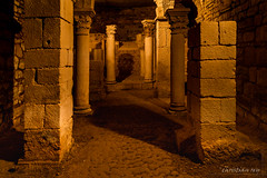 Crypte carolingienne de Flavigny-sur Ozerain (France) (christian.rey) Tags: flavignysurozerain flavigny crypte carolingienne bourgogne france vestiges côtedor abbaye sony alpha a7r2 a7rii 24105