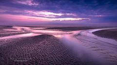 """The rivers of the sea"" (ylemort) Tags: beach sea sunset nature sand dusk water sky landscape coastline summer scenics beautyinnature outdoors blue vacations nopeople sunlight sun tropicalclimate everypixel belgique belgium kust canon canon5dmkiv"
