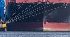 Tihama (ulrichcziollek) Tags: hafen hamburg schiff containerschiff tahima