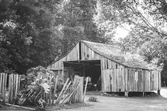 The shed. (Pablin79) Tags: shed fence wood log cabin barn farmhouse rustic house cottage woodpile hut shack light sky shadows trees nature monochrome black white outdoors tobaccodrying misiones argentina cuñapiru aristobulodelvalle