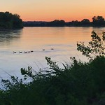 Nature Meditation: Idyllic evening commute of some Canada geese down the Missouri River at sunset. (1:14 seconds) thumbnail