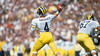 159076112TH13066_FocusOnSport (matthewgordon6) Tags: nationalfootballleague professionalfootball americanfootball nfl notredame in unitedstates