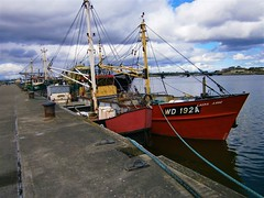 At The Quay (Kinsella Media) Tags: boat boats vessel vessels ships fishing fishingboats industry marine maritime water sea harbour harbor wexford ireland irish eire nautical boatphotos trawler wd192a laura anne lauraanne quay quayside moored dock