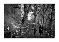 Promenade hivernale (thierrybalint) Tags: hautkoenigsbourg château sousbois neige herbe chemin promenade nb bw nikon nikoniste walk castle undergrowth snow grass path trees road people
