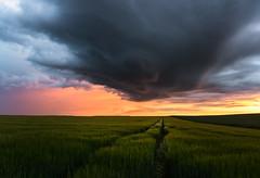 Sunset (Sabine Deixonne) Tags: nature landscape paysage orange catchycolours contraste l'heuredorée goldenhour twilight crepuscule cloud nuage sunset coucherdesoleil orage storm