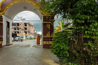 Monk arriving in the rain, Wat Kukam, Chiang Mai