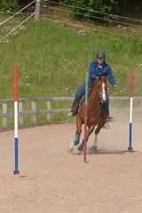 JBC_5465.jpg (Jim Babbage) Tags: krahc horseshow appaloosa horses 2018 bethany