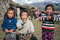 Three children in the remote village of Laya - Gasa District - Snowman Trek - Bhutan (PascalBo) Tags: nikon d500 asie asia southasia asiedusud drukyul drukgyalkhap bhutan bhoutan འབྲུག་ཡུལ། འབྲུག་རྒྱལ་ཁབ་ snowman trek trekking hike hiking lunana gasa himalaya himalayas jigmedorjinationalpark laya layap people portrait kid child enfant girl fille boy garçon outdoor outdoors pascalboegli