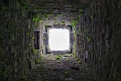 Bell Tower, Cong Abbey (Astaken) Tags: olympus omd em5 43 lens zuiko digital zd ed swd 1260mm