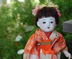 Mariko (Emily1957) Tags: ichimatsu japanese doll dolls toys toy kimono light natural nikon nikond40 naturallight