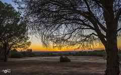 Los últimos rayos (R'Lay) Tags: atardecer puestadesol campo naturaleza arboles cielo colores trees landscapes paisaje nature colours sunset countryside heaven