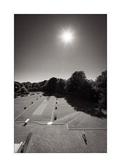 Soleil brûlant. (Scubaba) Tags: france europe nord noirblanc noiretblanc villacavrois fourmi contrejour soleil jardin blackwhite bw ants backlight sun garden