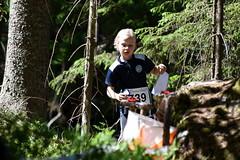 Helsinki O-Games - day 1, last control point (Espoo, Velskola, 20180609) (RainoL) Tags: crainolampinen 2018 201806 20180609 athlete clb competition espoo finland forest geo:lat=6031038287 geo:lon=2463353633 geotagged helsinkiogames helsinkiogames2018 hog20181 hs june lastcontrol nyland orienteer orienteering orientering sport summer suunnistaja suunnistus urheilija urheilu uusimaa velskola vällskog fin pid mmsi