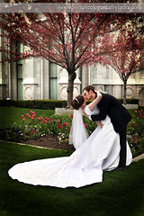 Dipping The Bride (Laura K Bellamy) Tags: bride groom wedding temple couple kisses weddings