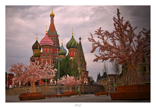 Cathedral of Vasily the Blessed