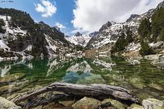 Estany de Monestero (sostingut) Tags: llacspirineus nikon d750 tamron haida lago agua montaña árbol madera tronco reflejo primavera valle verde nube cielo río nieve ladera