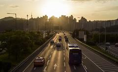 Into the Light (TigerPal) Tags: southkorea korea spring fis sunset seoul seoulforest han hangang hanriver highway gangbyeon flare traffic transportation