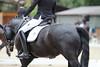 _MG_7876 (dreiwn) Tags: dressage dressur dressuur pferd reitturnier turnierreiten pferdesport horse horseback horseriding equestrian reitverein dressurprüfung kandare doublebridle reiten pferde reitplatz ridingarena