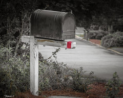 Waiting On the Postman (that_damn_duck) Tags: mailbox mail rural post neighborhood nikon