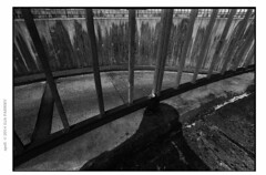 distoAARAPX1000281expo (Ilia Farniev) Tags: aarhus agfa rodinal shadow distopia urbanlights spell iskygen apx100 flektogon pentacon czj flow gitter silverfast ходмыслей людоед immanence motto