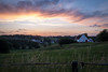 Lasne (dressk) Tags: lasne brabant wallon walloonbrabant wallonia wallonie belgique belgium belgië town village countryside sunset evening nature farm nikon d40x nikond40x europe