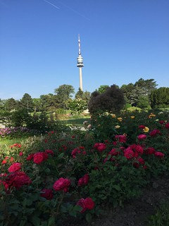 20180527_Donaupark_016