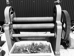 Giant mangle? (Bennydorm) Tags: colton mono wheels iphone6s junio giugno juni juin june farm inghilterra inglaterra angleterre europe uk britain gb england cumbria bouth machinery exhibit appliance metal rollers mangle