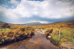 Climb the Mountains (gusdiaz) Tags: ireland wicklow mountains canon canonphotography nature naturephotography 1018mm wide lens scenery landscape isolated beautiful range montañas stream riachuelo amazing naturaleza gorgeous stunning vacation summer trek roadtrip road trip sky clouds cielo nubes