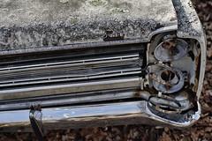 (jtr27) Tags: dsc00696e2 jtr27 sony alpha a7 alpha7 ilce7 ilce mirrorless canon fdn nfd fd 50mm f14 manualfocus plymouth auto car automobile antique vintage junk junkyard wreck maine newengland