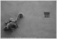 Carrer de l'Almudaina (Dit is Suzanne) Tags: 09112017 img1990 spanje spain испания balearen balearicislands балеарскиеострова illesbalears islasbaleares majorca mallorca мальорка ©ditissuzanne canoneos40d tamron18200mmf3563diiivc herfst autumn осень palmademallorca пальмадемальорка wandeling walk прогулка zwartwit blackandwhite чернобелый carrerdelalmudaina cdelaalmudayna ornament орнамент views150