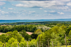 2018 - photo 159 of 365 - early morning view over to South Mountain, Nova Scotia (old_hippy1948) Tags: landscape vineyard