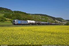 RTB Br 193.816 (Marco Stellini) Tags: rurtalbahn rtb cargo bahn vectron siemens railpool 193 maintal kbs800 deutschland german
