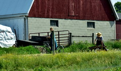 amish (bluebird87) Tags: nikon d7200 amish boy girl farm