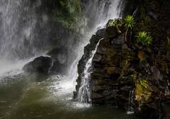 La Lily Falls (Rod Waddington) Tags: africa african afrique afrika madagascar malagasy nature la lily falls waterfall rocks plants tree water