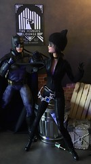 A Cat and her prey (MaxxieJames) Tags: catwoman batman selina kyle bruce wayne dc dcu mattel barbie ken justice league doll dolls collector gotham