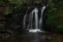Rincones del bosque (Jose Cantorna) Tags: rincón bosque nikon d610 nature naturaleza seda agua water