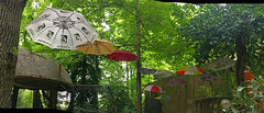 Umbrella Art Installation Pano (BKHagar *Kim*) Tags: bkhagar umbrella umbrellas art installation outdoor outside elkriver imagination colorful tree trees