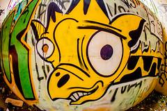 Long Neck 4 Life (Thomas Hawk) Tags: america california cossonhall girafa sf sagehall sanfrancisco starburst ti treasureisland usa unitedstates unitedstatesofamerica abandoned barracks decay giraffe graffiti fav10 fav25